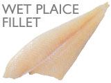 WET PLAICE FILLET